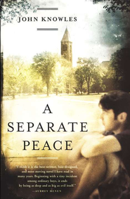 a seperate peace innocence to experience Need help on themes in john knowles's a separate peace check out our  thorough thematic  once they graduate, they'll have to enlist this fact makes  the.