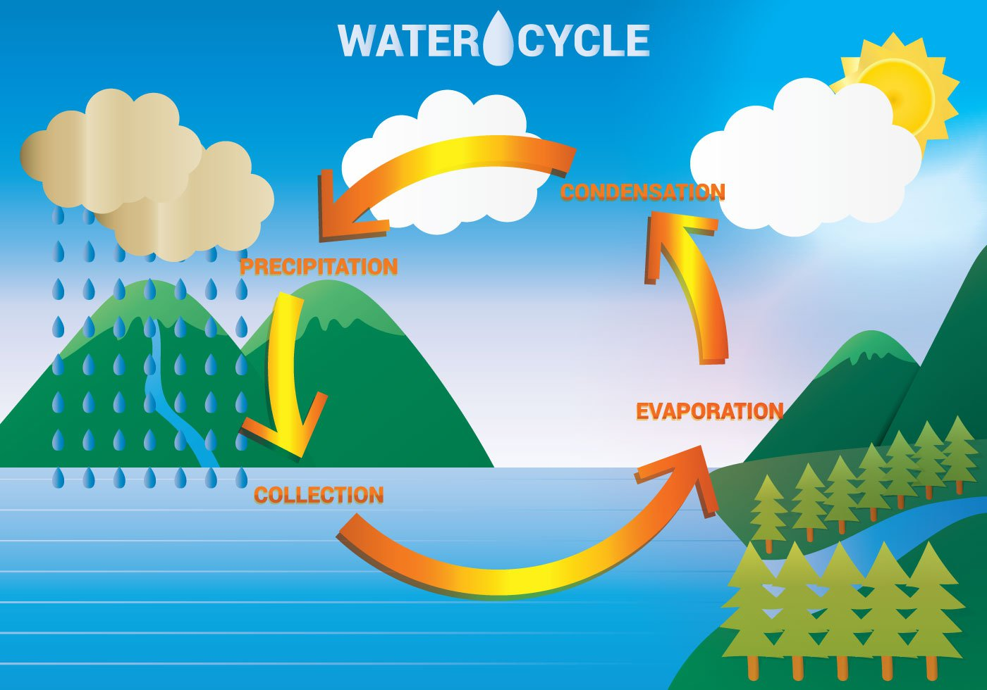 Water Cycle 4th Grade Science | Create WebQuest